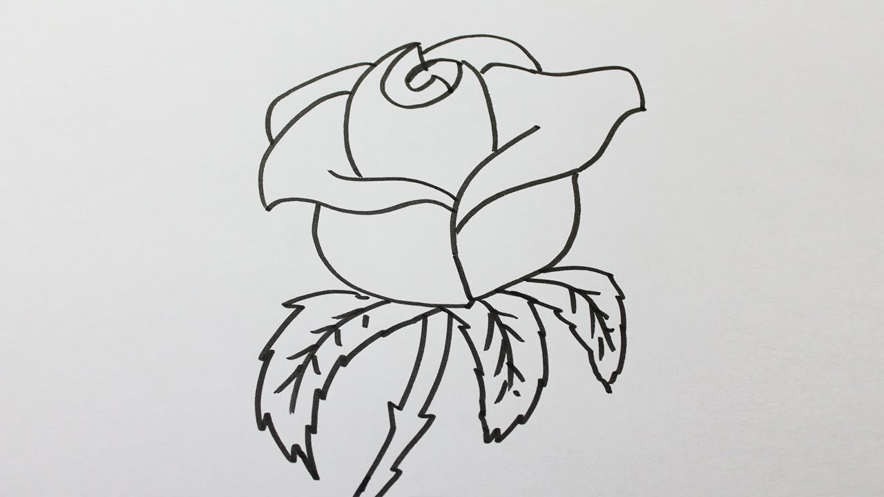 Comment faire une rose en dessin - Photo de fleur a dessiner ...